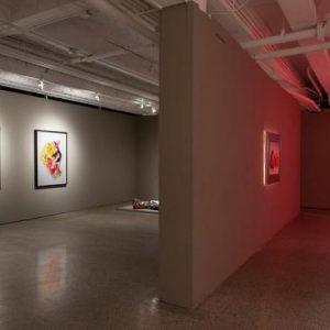 Galeri Seni Kontemporer Terbaik di Ottawa